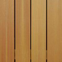 Western Cedar (color)