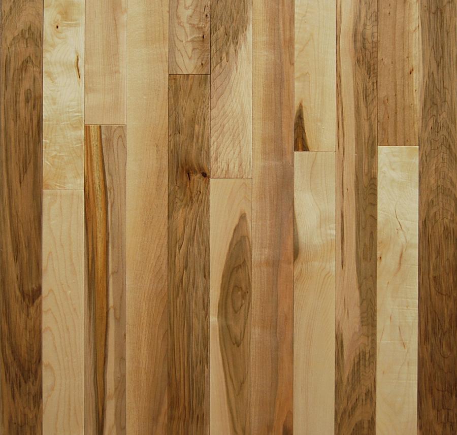 2 1 4 Silver Maple Hardwood Flooring Builders Surplus
