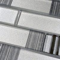 WS101 Silver